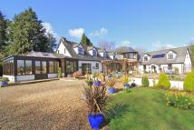 Detached property for sale in Michaelston-y-Fedw...