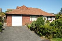 Detached Bungalow for sale in Fisher Close, Wadebridge...
