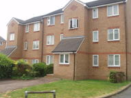 1 bed Studio flat in Greenacre Gardens...