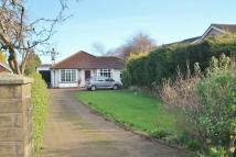 Bungalow for sale in Church Lane, Eston