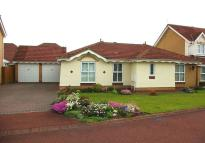 3 bed Detached Bungalow in Millais Grove, Billingham