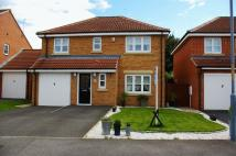 Detached property for sale in Hardy Grove, Billingham