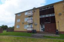 Sidbury Heights Flat to rent
