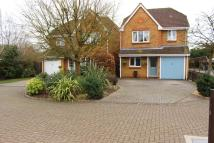 3 bed Detached house to rent in Orchid Drive...
