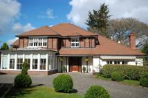 Detached home for sale in Bingham Avenue, Lilliput...