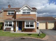 Acle Meadows Detached property for sale
