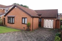 Detached Bungalow for sale in Atkinson Gardens...