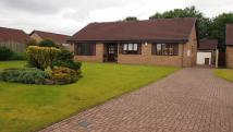 Detached Bungalow in Low Green...