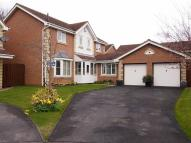 Detached house for sale in Wolveston Close...