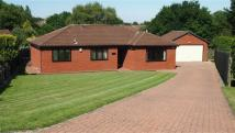 2 bed Detached Bungalow for sale in Stoneleigh Court...