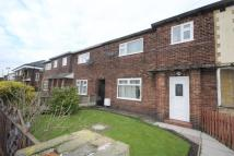 Crowe Avenue Terraced property to rent