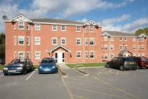Apartment to rent in Patton Drive...