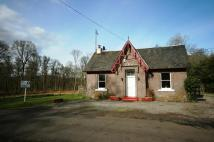 Gartocharn Lodge to rent