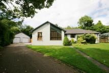 4 bed Detached house to rent in CASTLE GARDENS, DRYMEN...