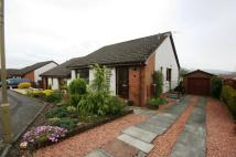 Semi-Detached Bungalow in KILTROCHAN DRIVE |...