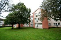 Studio flat to rent in Wykeham Place, Glasgow...