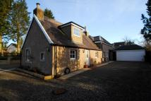 Detached Villa to rent in Balfron Road, Killearn...