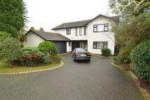 Fairhaven Avenue Detached property for sale
