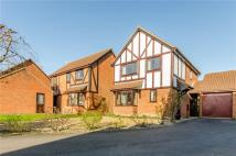 3 bedroom Detached house in Hayster Drive...