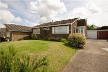Detached Bungalow for sale in Beald Way, Ely, Cambs