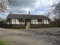 3 bed Bungalow to rent in Station Road, HADDENHAM