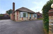 Detached Bungalow in Ickleton Road, Duxford...