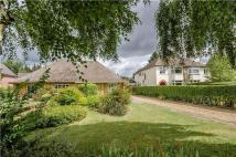 4 bed Semi-Detached Bungalow in London Road, Harston...
