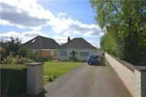 2 bed Detached Bungalow in St Neots Road, Hardwick...