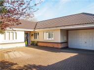 3 bed Detached Bungalow in The Green, Histon...