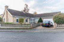 2 bed Detached Bungalow in Priors Close, Histon...