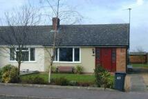 Bungalow to rent in Tavistock Road, Cambridge