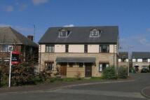 House Share in Arbury Road, Cambridge