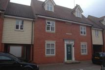 House Share in Colchester