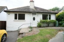 Detached Bungalow to rent in Black Robin Lane...