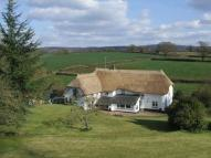 Gorgeous Detached property for sale