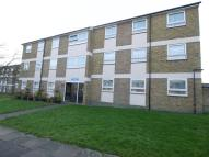 Flat to rent in Ivy Road, London