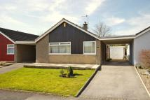 Bungalow to rent in Fallowfield, Skipton...