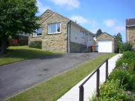 2 bed Detached Bungalow in PARK WOOD CRESCENT...