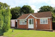 2 bed Detached Bungalow in Culm Lea, Cullompton...