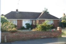 Bungalow to rent in Rustington, West Sussex