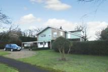 Detached property to rent in MAYFORD/WOKING