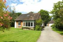 4 bed Detached Bungalow to rent in HORSELL/WOKING