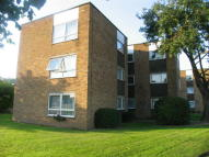2 bed Ground Flat to rent in Lampits, Hoddesdon, EN11