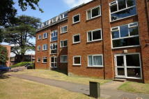 Flat to rent in Kestral Court, Briardale...