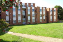 1 bedroom Flat in Trapstyle Road, Ware...