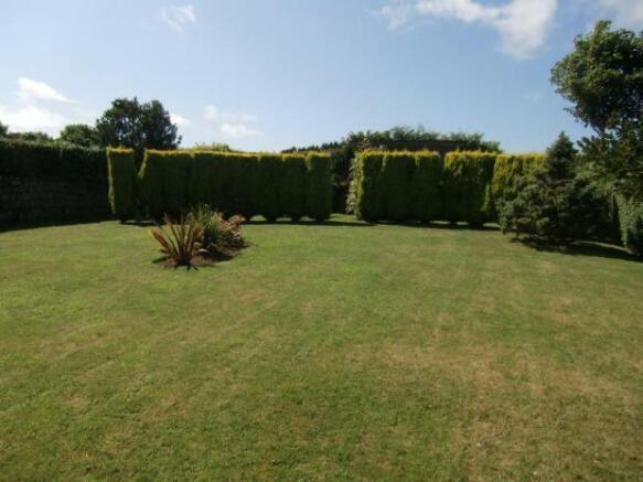 PRear Garden