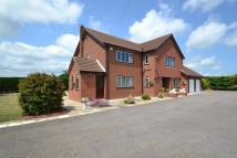 4 bed Detached home in RACKHEATH