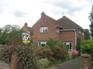 Detached property to rent in Le Strange Close, Norwich