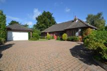 Detached Bungalow for sale in CRINGLEFORD