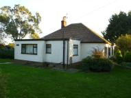 3 bed Detached Bungalow in CATFIELD